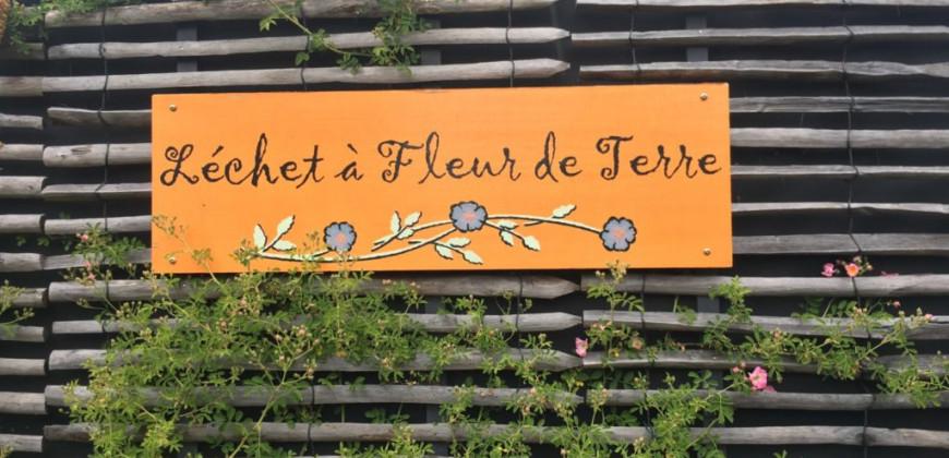 Guérande - Léchet à fleur de terre