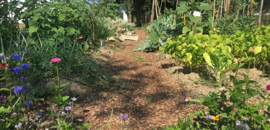 Rezé - Jardin Pomona Terre d'Azur